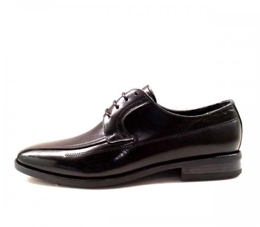 Zapatos Elegantes Mod 14701